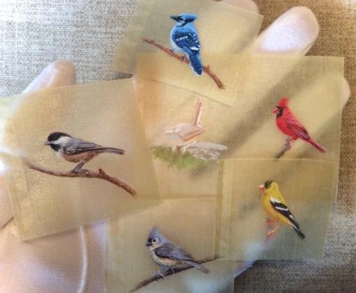 miniature songbird paintings on silk by rachelle siegrist