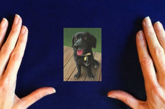 Commission-a-dog-painting-Happy-Tucker-by-Rachelle-Siegrist1