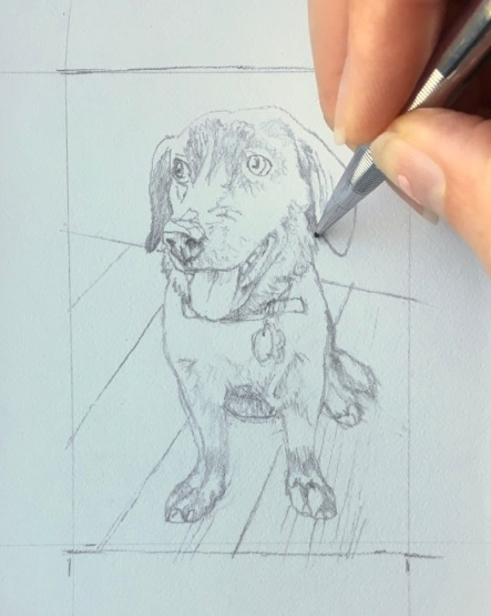dog drawing for dog commission