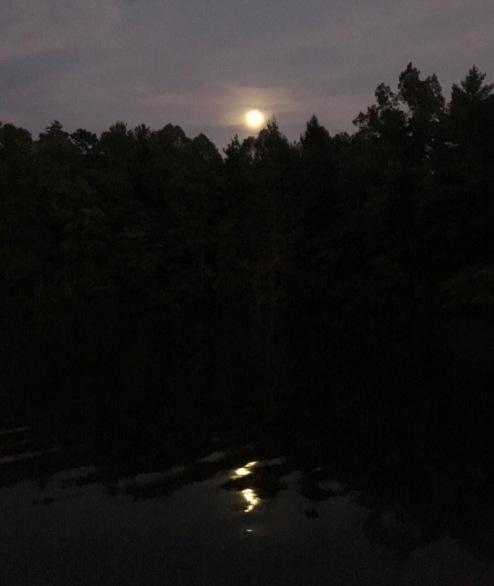 rachelle siegrist full moon photo