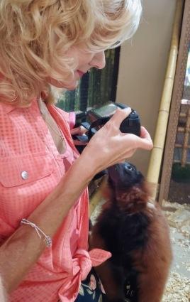 rachelle siegrist with lemurs san antonio aquarium5