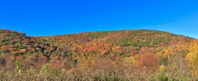 fall color in the smokies2