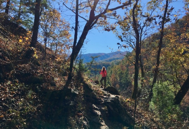 hiking the smokies
