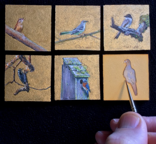 miniature songbird paintings by wes siegrist