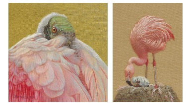 siegrist miniatures in the tradition of audubon exhibition