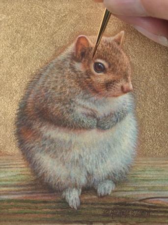 Bunny Squirrel by Rachelle Siegrist