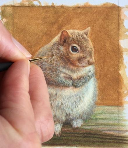 miniature squirrel painting by rachelle siegrist