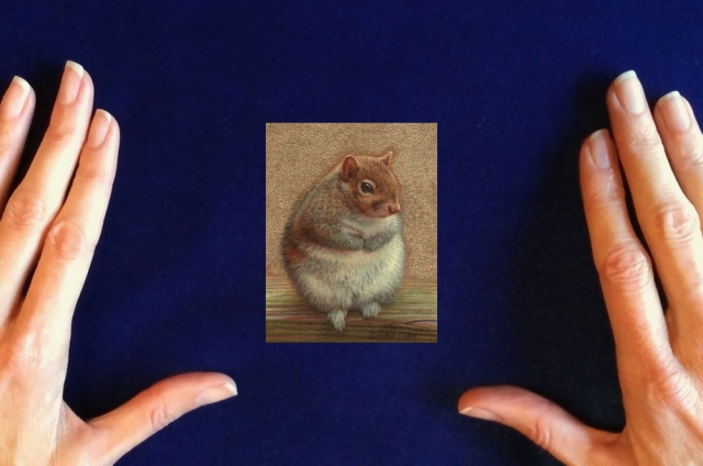Squirrel-painting-by-Rachelle-Siegrist1
