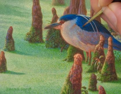 black-crowned night heron miniature painting