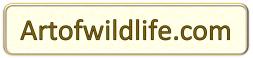 Artofwildlife.com