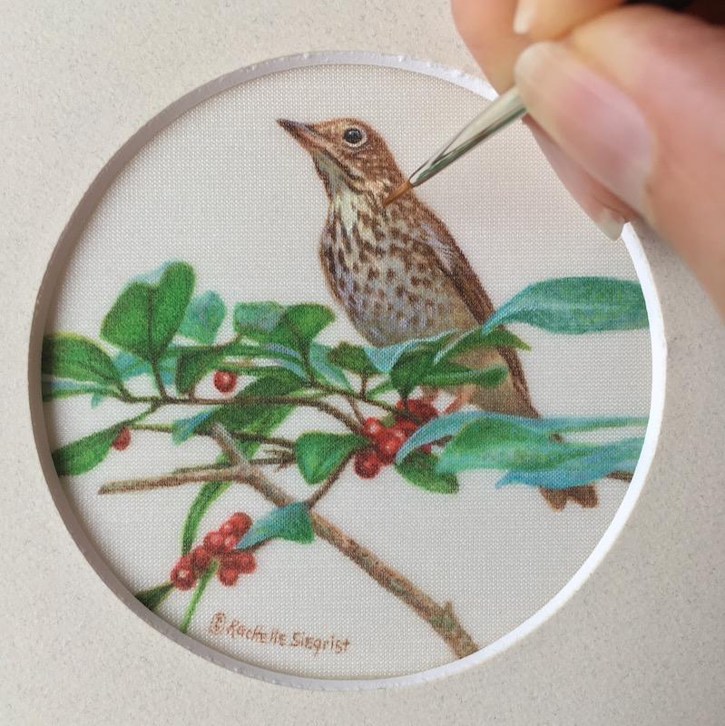 wood thrush bird painting on silk by rachelle siegrist