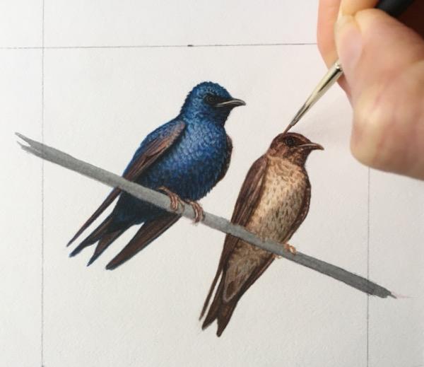 miniature bird painting